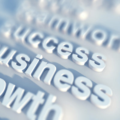 5 Elements of a Successful Business
