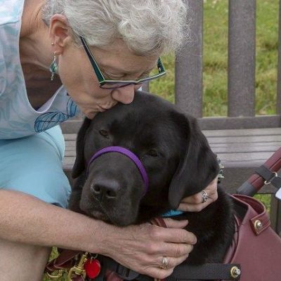 Service Dogs: Working Canines Who Deserve Our Thanks